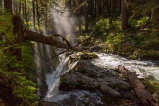 Sol Duc Falls, looking downriver