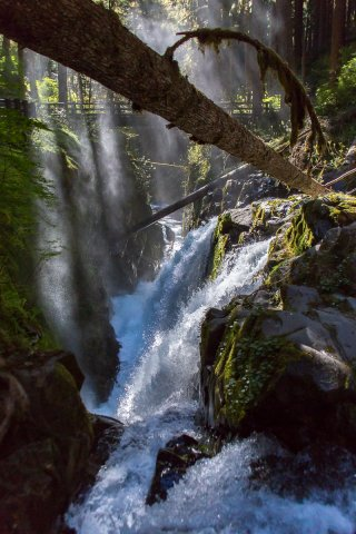 Sol Duc Falls, downriver again