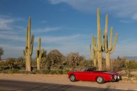 Saguaros. Roadster for scale.